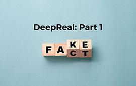 fake versus fact wooden blocks